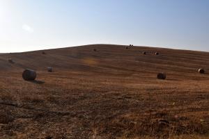 AGRITURISMO LA FRATERNITA